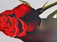 Kriss rose painting